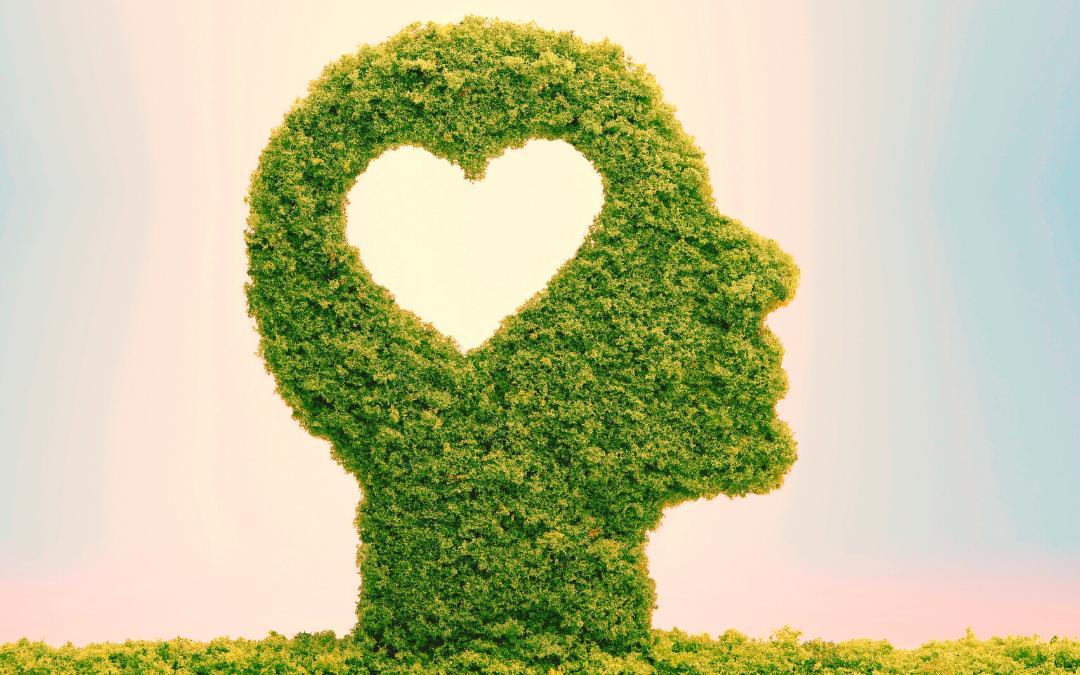 Inteligência emocional: o que é, qual a importância e como aprimorar